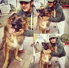 Rajat Tokas awards with his dog leo