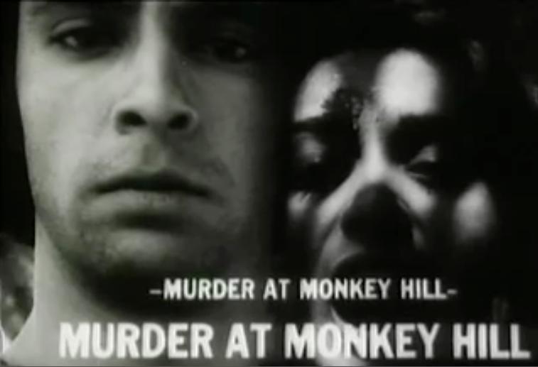 Vidhu Vinod Chopra Directorial debut: Short film Murder At Monkey Hill in 1976.