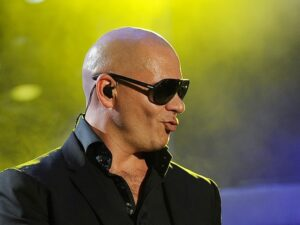 Know More About Pitbull:
