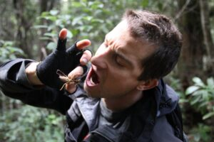 Know More About Bear Grylls
